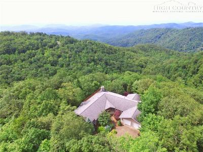 Boone Single Family Home For Sale: 455 Greystone Drive