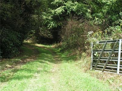Avery County, Watauga County Residential Lots & Land For Sale: Tbd Laurel Creek