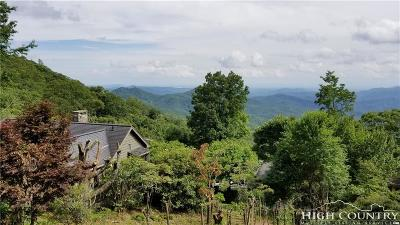 Blowing Rock Single Family Home For Sale: 170 Dogwood Lane