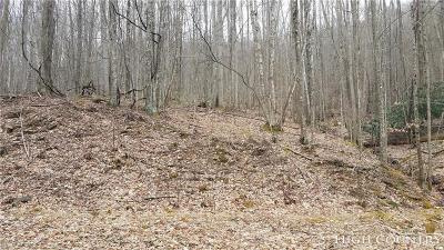 Avery County, Watauga County Residential Lots & Land For Sale: 134 Deergrass Road