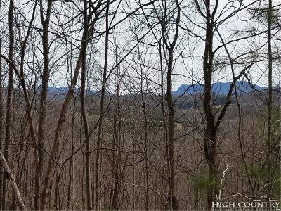 Avery County, Watauga County Residential Lots & Land For Sale: 208 Dalton Lane