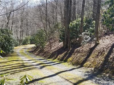 Avery County, Watauga County Residential Lots & Land For Sale: Lot 37r Greystone Drive