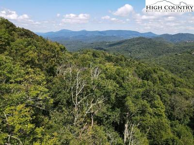 Avery County, Watauga County Residential Lots & Land For Sale: #24 Nettles Ridge Road