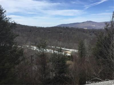 Sugar Mountain Condo/Townhouse For Sale: 367 Skyleaf Drive #D-10