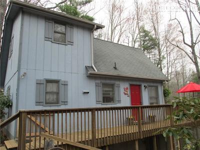 Ashe County Single Family Home For Sale: 321 Eagle Nest Lane