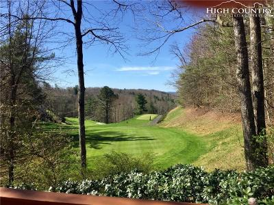 Avery County Single Family Home For Sale: 1340 Richard Childress Road