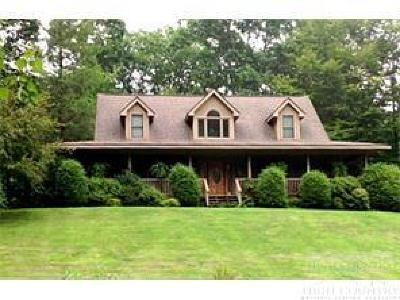 Avery County Single Family Home For Sale: 168 Highland Drive