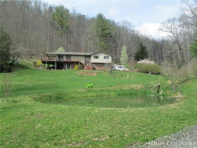 Ashe County Single Family Home For Sale: 290 Mtn Cove Road