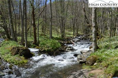 Avery County Residential Lots & Land For Sale: 1355 Big Horse Creek Road