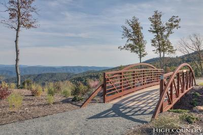 Avery County, Watauga County Residential Lots & Land For Sale: Lot 303 Ninebark Road