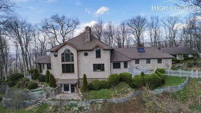 Boone Single Family Home For Sale: 384 Shores Way