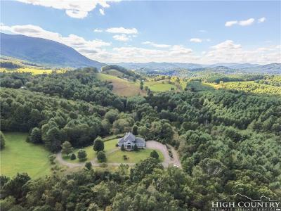 Alexander County, Caldwell County, Watauga County, Avery County, Ashe County Single Family Home For Sale: 1352 Deep Ford Road