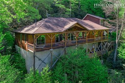 Boone Single Family Home For Sale: 231 Cubs Den Trail