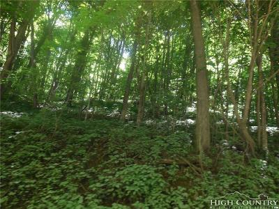 Avery County, Watauga County Residential Lots & Land For Sale: Tbd Tater Hill Road