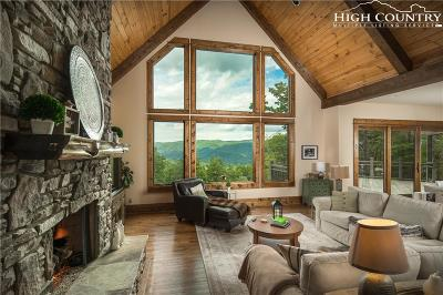 Boone Single Family Home For Sale: 115 Passionflower Trail