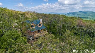 Boone Single Family Home For Sale: 149 Eagle Roost Road