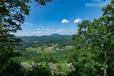 Ashe County Single Family Home For Sale: 2742 Idlewild Road