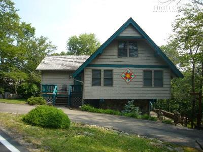 Beech Mountain Single Family Home For Sale: 104 Skiway Circle