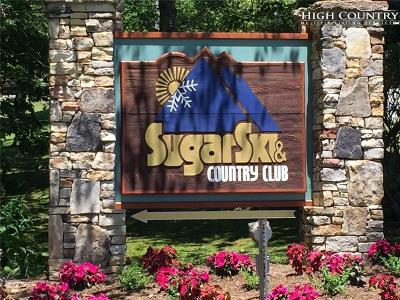 Sugar Mountain Condo/Townhouse For Sale: 106 Sugar Ski Drive #613