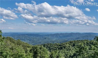 Blowing Rock Single Family Home For Sale: 120 Orchard Lane