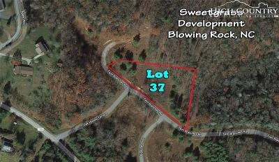 Avery County, Watauga County Residential Lots & Land For Sale: Lot 37 Twin Branches Road