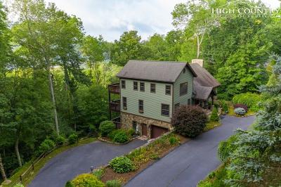 Banner Elk Single Family Home For Sale: 164 Letterfern Drive