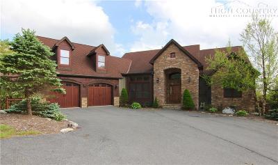 Sugar Mountain Single Family Home For Sale: 325 Buena Vista Loop