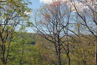 Deep Gap Single Family Home Under Contract - Show: 845 Trout Lake Road