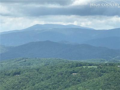 Sugar Mountain Condo/Townhouse For Sale: 983 Craggy Pointe #30A