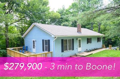 Blowing Rock Single Family Home For Sale: 142 Nile Park Drive