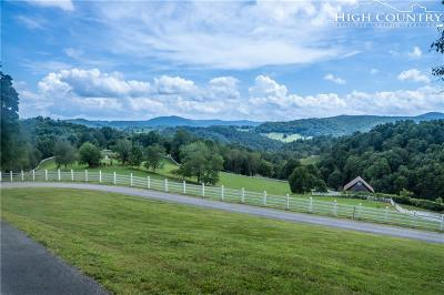 Boone NC Single Family Home For Sale: $2,350,000