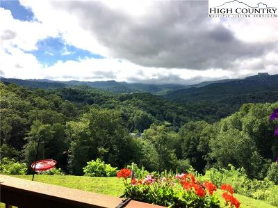 Avery County Single Family Home For Sale: 317 Penny Lane #2B
