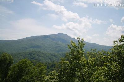 Boone NC Single Family Home For Sale: $255,000