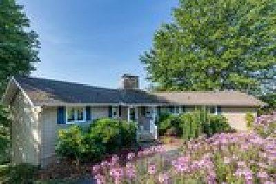 Mountain Glen Single Family Home For Sale: 527 Laurel Lane