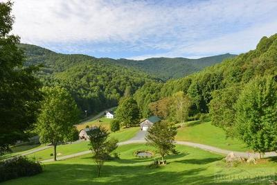 Watauga County Single Family Home For Sale: 1548 Dutch Creek Road