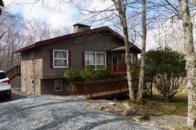 Watauga County Single Family Home For Sale: 105 Pinnacle Ridge Road