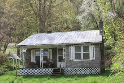 Ashe County Single Family Home For Sale: 923 East Big Springs Road