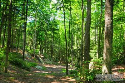 Avery County, Watauga County Residential Lots & Land For Sale: 177 Equestrian Drive