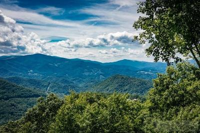 Avery County, Watauga County Residential Lots & Land For Sale: 2113 Eagles Nest Trail