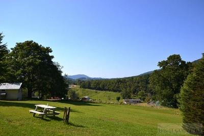 Ashe County Single Family Home For Sale: 917 Ashe Park Road