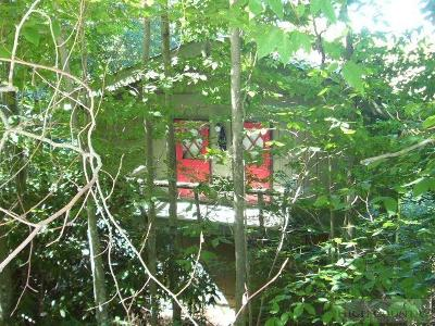 Beech Mountain Single Family Home For Sale: 212 Overbrook Trail