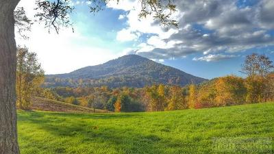 Alexander County, Burke County, Caldwell County, Ashe County, Avery County, Watauga County Residential Lots & Land Under Contract - Show: 162 Wickham Square
