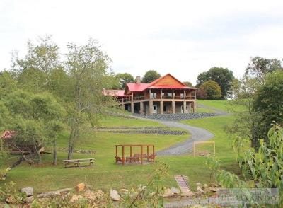 Ashe County Single Family Home For Sale: 3520 Lower Nettle Knob Road