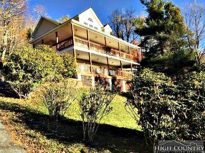 Avery County Single Family Home For Sale: 204 Skiview Road