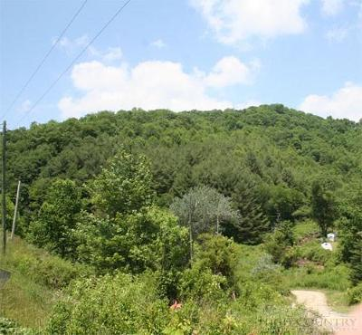 Ashe County Residential Lots & Land For Sale: Tbd Ripshin Road