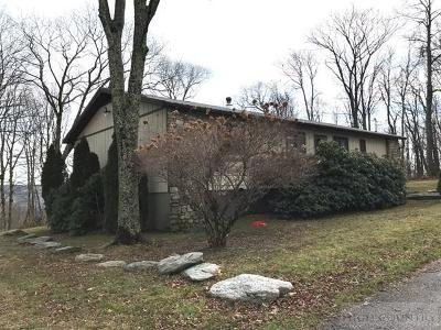 Avery County Single Family Home For Sale: 220 Tower Road