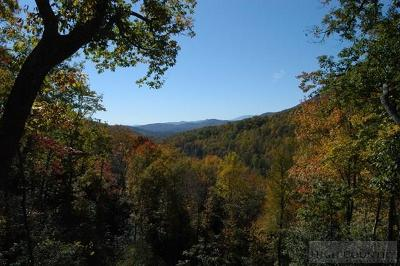 Avery County Residential Lots & Land For Sale: Tbd Laurel Parkway