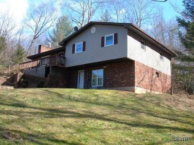 Ashe County Single Family Home For Sale: 282 Calhoun Road