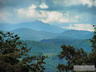Watauga County Residential Lots & Land For Sale: 2031 Roby Green Road