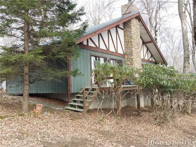Beech Mountain Single Family Home For Sale: 163 Pond Creek